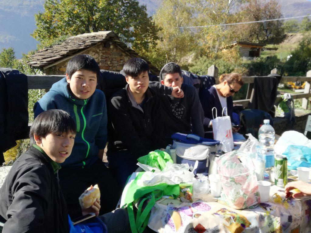 picnic dopo la raccolta
